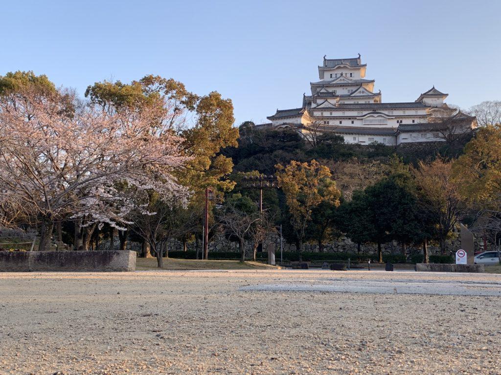 シロトピア記念公園からの姫路城